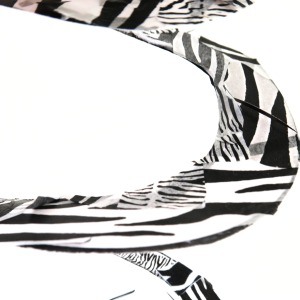 Ta-dah - a zebra snake!